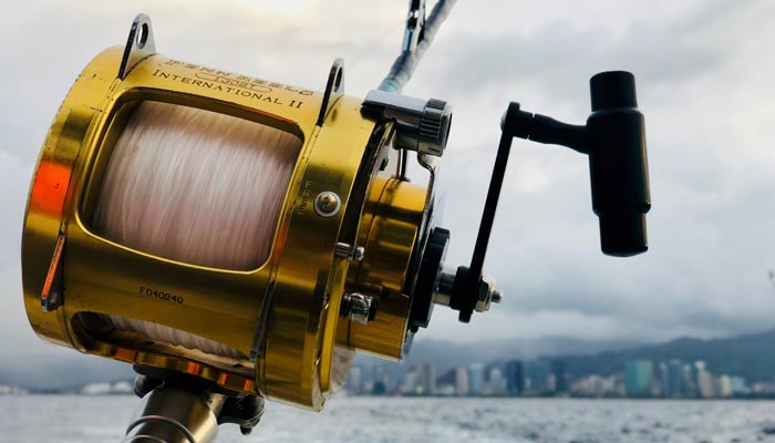 Deep sea fishing chaters Gold Coast